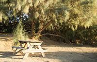 campsite_e7_small
