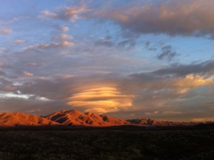 Sunburst (Photo by Barbara Vos)