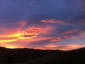 Beautiful Morning (Photo by Barbara Vos)