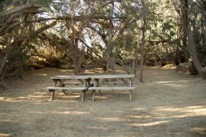 Camp Site E-5